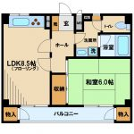 武蔵野市関前3丁目1LDKマンション(間取)