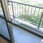 三鷹駅徒歩4分、武蔵野市中町2丁目のオートロック付き1LDK賃貸マンション(バルコニーの写真)
